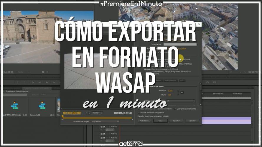 Exportar en formato WhatsApp